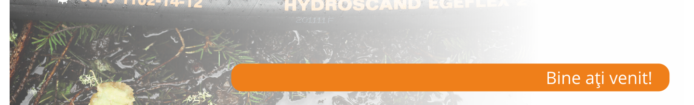Bine ați venit pe Blogul HYDROSCAND